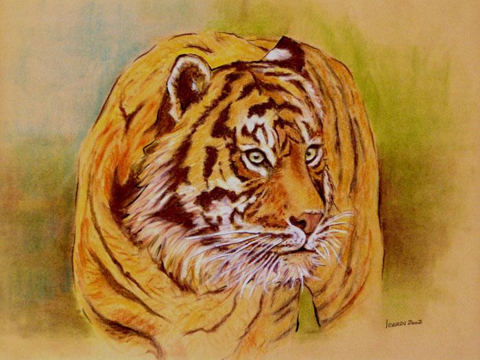 Tigre - Matita 49x34 (2002)