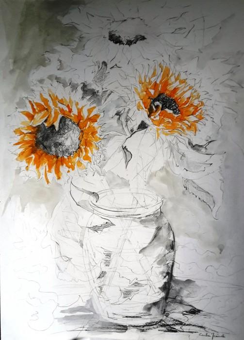 Girasoli - Disegno 70x50 (2015)